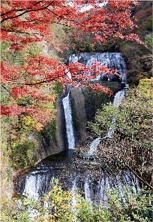 紅葉と袋田の滝