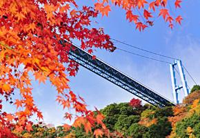 竜神大吊橋と紅葉